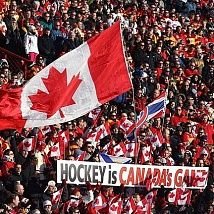 «Canada's sports business: experience of NHL, MLS, NBA»